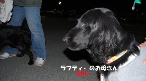 006_convert_20100330140300.jpg