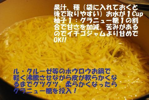 007_convert_20091211125310.jpg