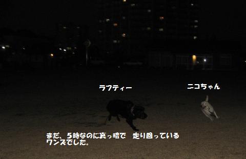 008_convert_20091207180319.jpg