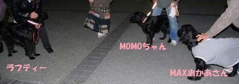 008_convert_20100330140004.jpg