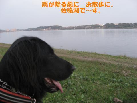 012_convert_20091031124143.jpg