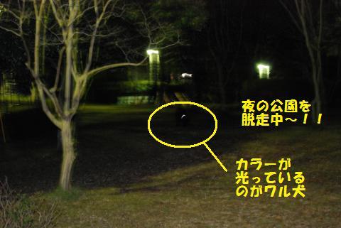 012_convert_20091223222647.jpg