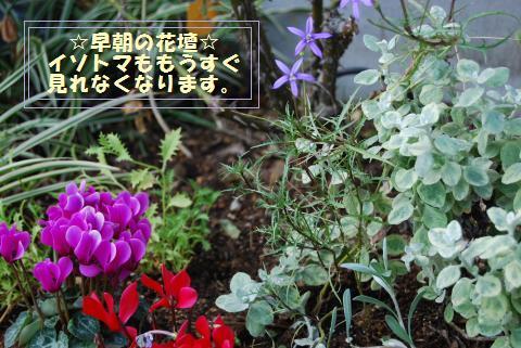014_convert_20091030124932.jpg