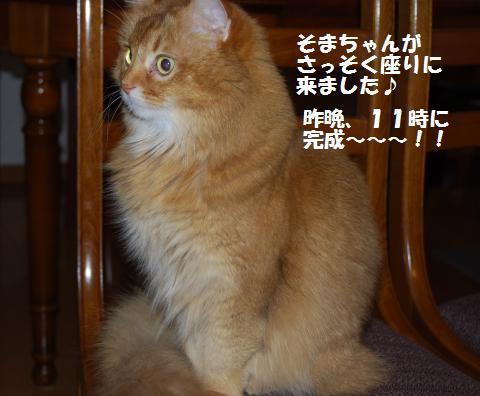 014_convert_20091124233239.jpg