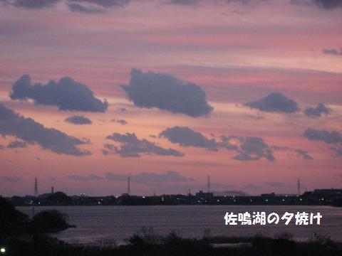 014_convert_20091216174640.jpg