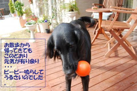 014_convert_20100113164951.jpg