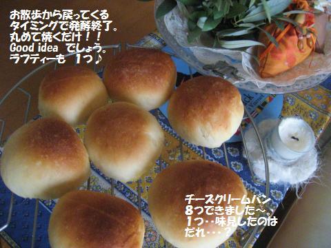 015_convert_20091127181348.jpg