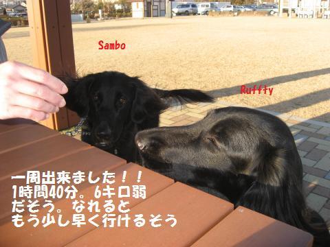 015_convert_20100127173237.jpg