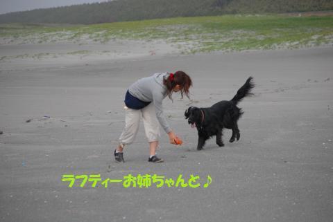 015_convert_20100505204152.jpg