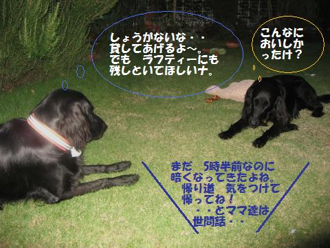 016_convert_20091020194350.jpg