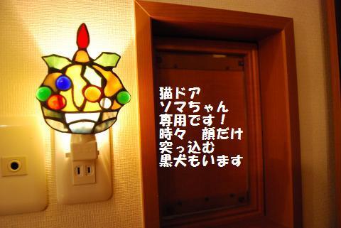 017_convert_20091226215110.jpg