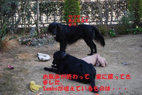 018_convert_20100205201457.jpg