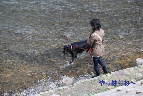 018_convert_20100328214619.jpg
