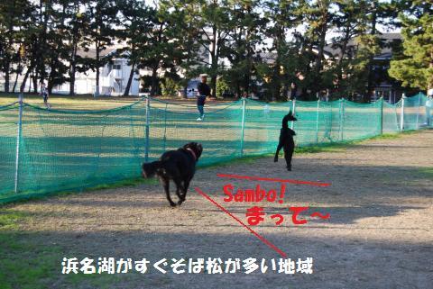 020_convert_20091104194644.jpg