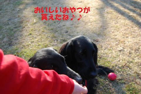 026_convert_20100121223918.jpg