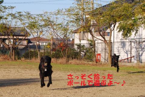 029_convert_20091104194929.jpg