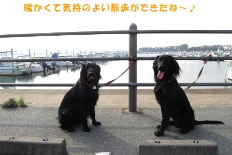 031_convert_20100224225816.jpg