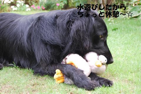 032_convert_20100706075749.jpg