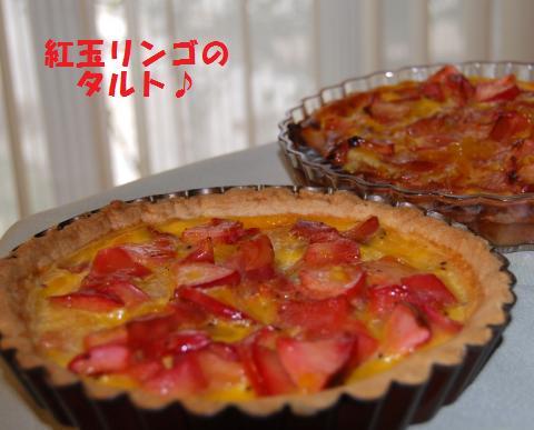 033_convert_20091112190410.jpg