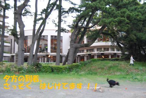 033_convert_20100419121446.jpg