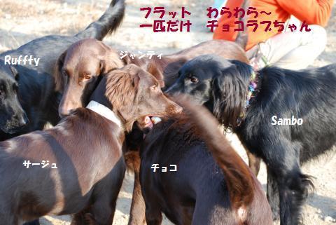 035_convert_20091210195748.jpg