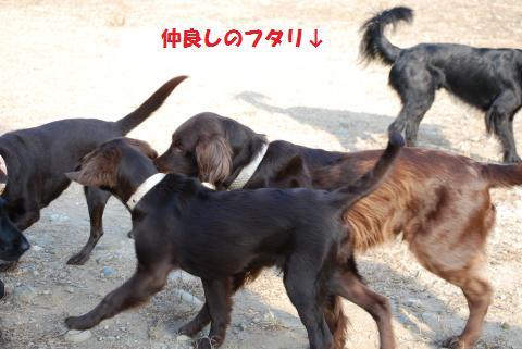 038_convert_20091210200318.jpg