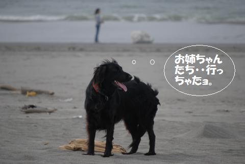 039_convert_20100505223852.jpg