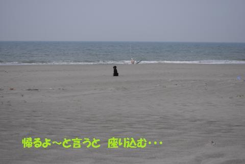 045_convert_20100505224430.jpg
