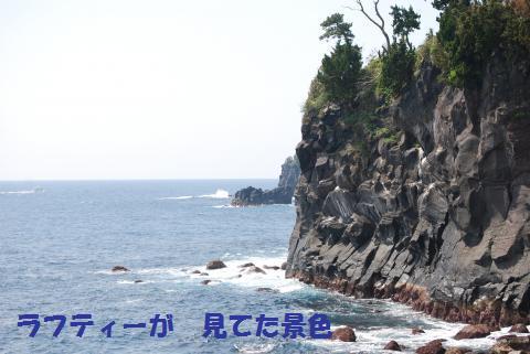 127_convert_20100420164438.jpg
