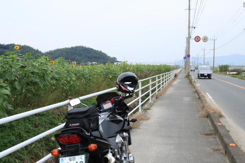 20081123_01.jpg