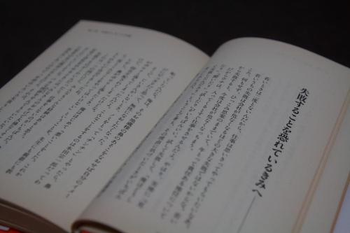 20081129_hon32.jpg