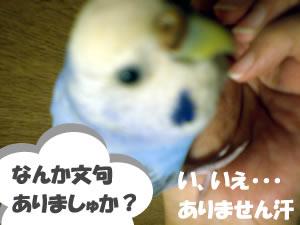fuchan01.jpg