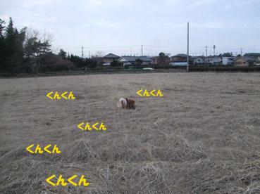 DSCF1087(2).jpg