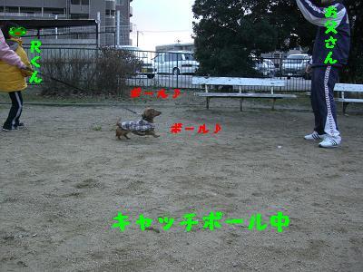 CIMG4850.jpg