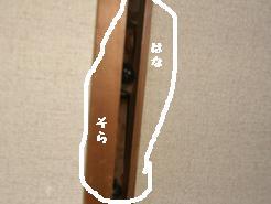 CIMG5316.jpg