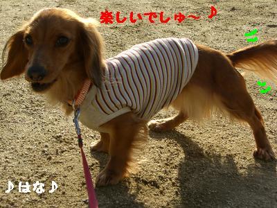 CIMG6096.jpg