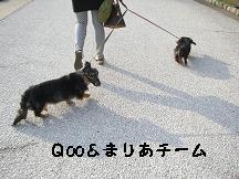 CIMG6839.jpg