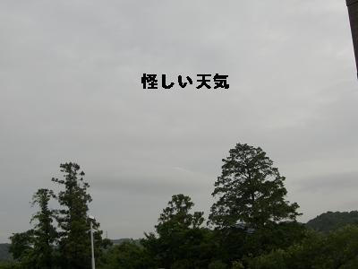 CIMG8273.jpg