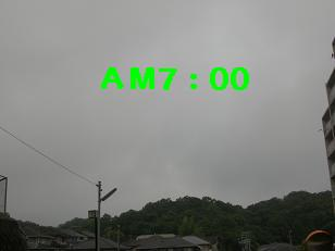 CIMG8312.jpg