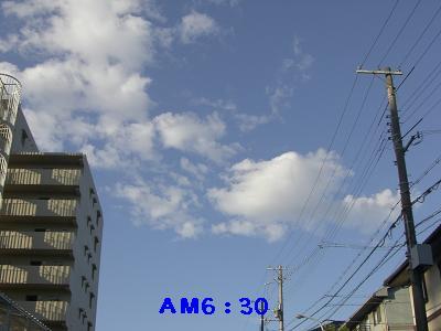CIMG8524.jpg
