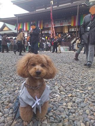 2012_成田山1