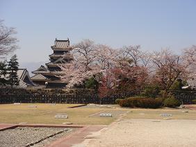 090410桜1