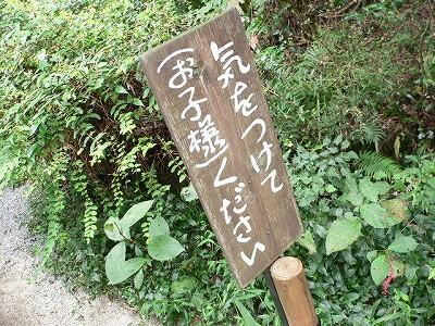 s-aki06.jpg