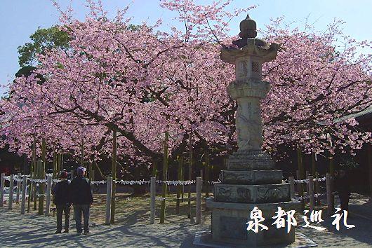 20100228miyajidake01.jpg