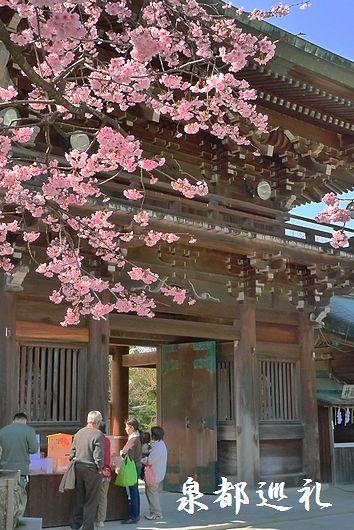 20100228miyajidake04.jpg