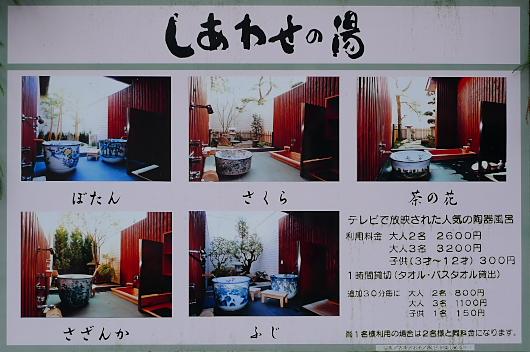 20100327seiunso03.jpg