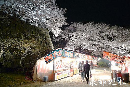 20100330maizurukoen04.jpg