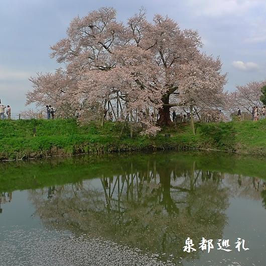 20100404asai01.jpg