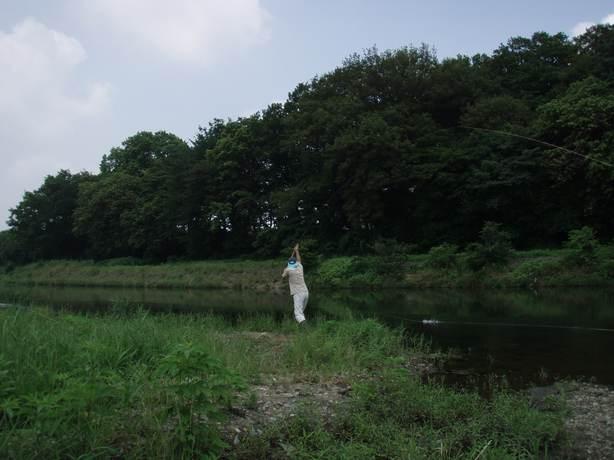 P7020018.jpg