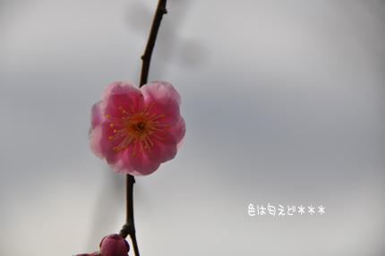 100217-2.jpg